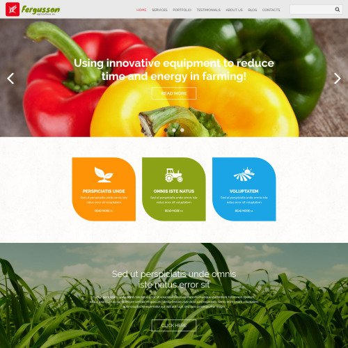 Fergusson - Joomla! Template based on Bootstrap