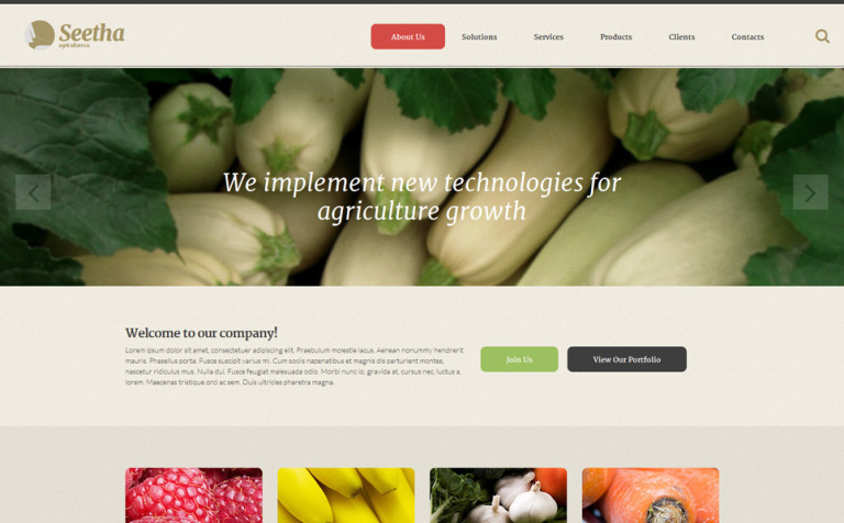 Seetha Website Template