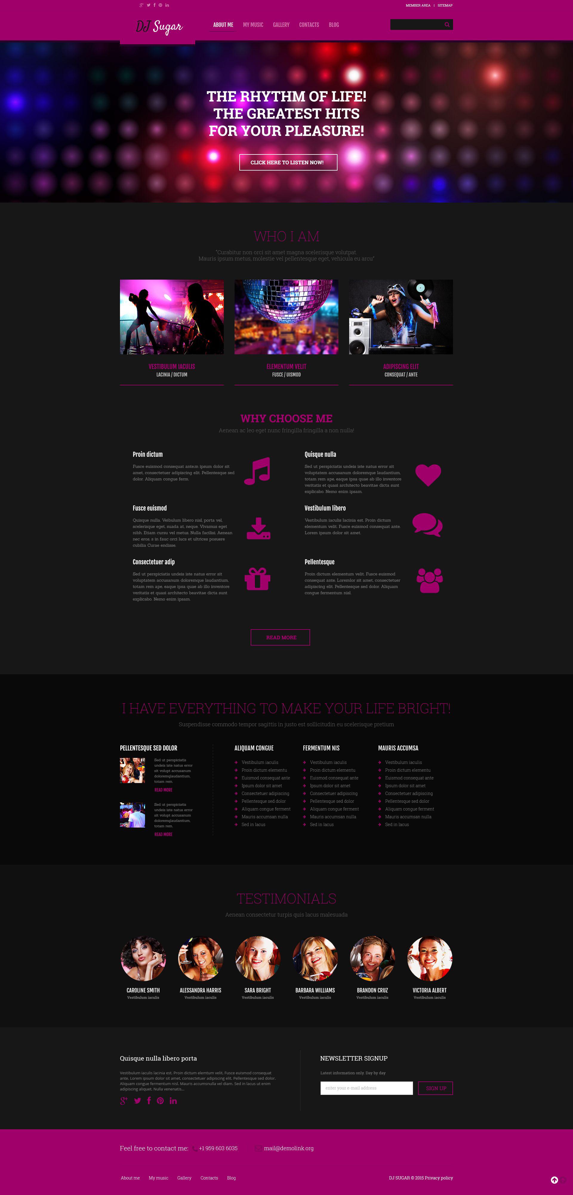 Tema WordPress Flexível para Sites de DJ №54790 - captura de tela