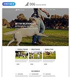 Animals & Pets Website  Template 54816