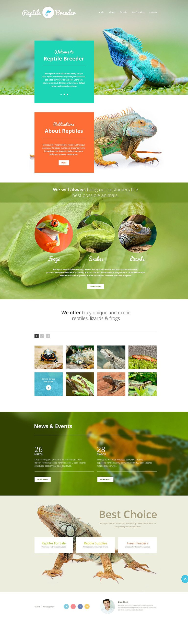 Reptile Breeder Website Template New Screenshots BIG