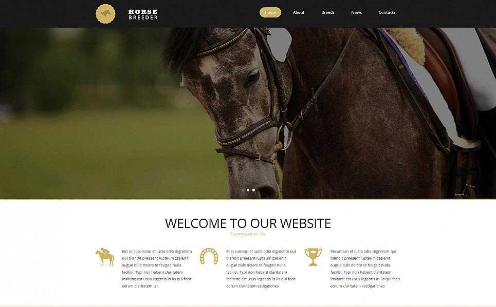 Responsive Moto CMS 3 Template over Paarden New Screenshots BIG