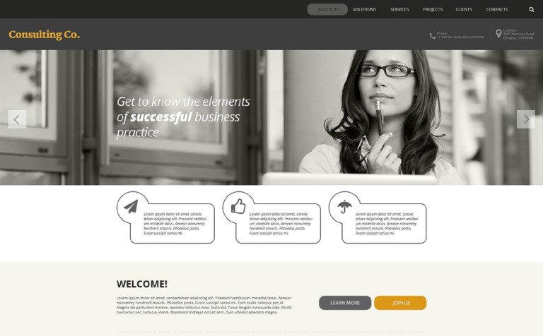Consulting Co. Website Template