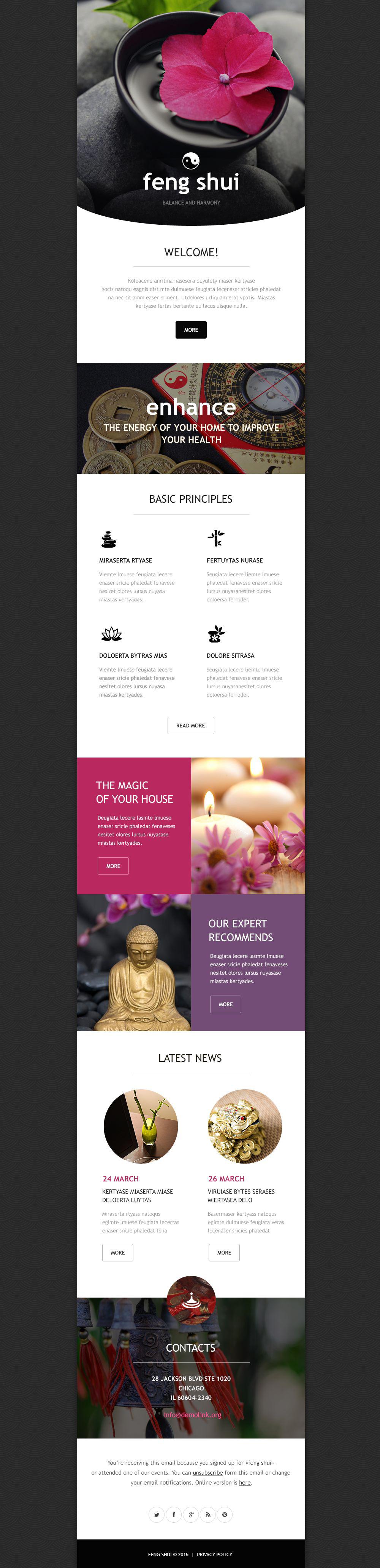 Feng Shui Responsive Newsletter Template - screenshot