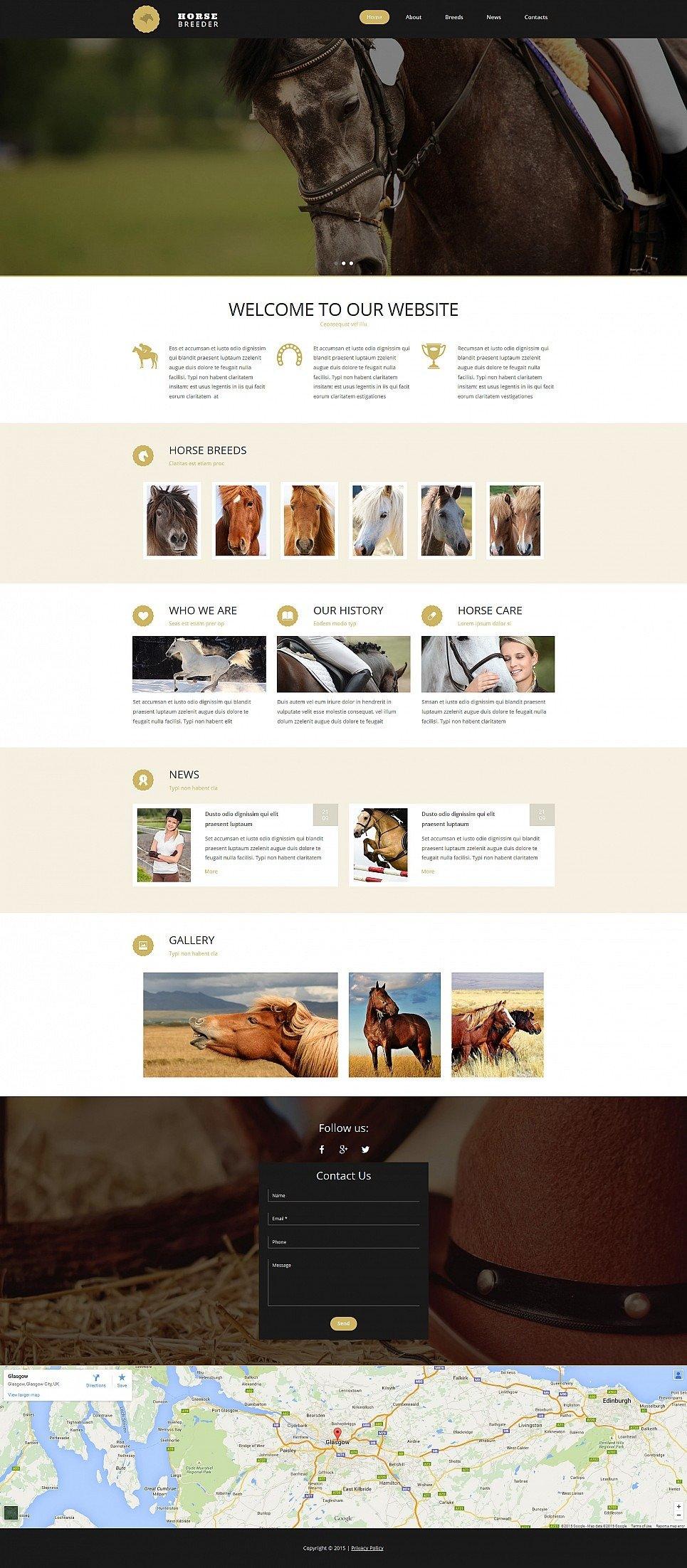 Horse Responsive Moto CMS 3 Template New Screenshots BIG
