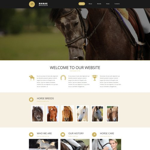 Horse Breeder - MotoCMS 3 Template based on Bootstrap