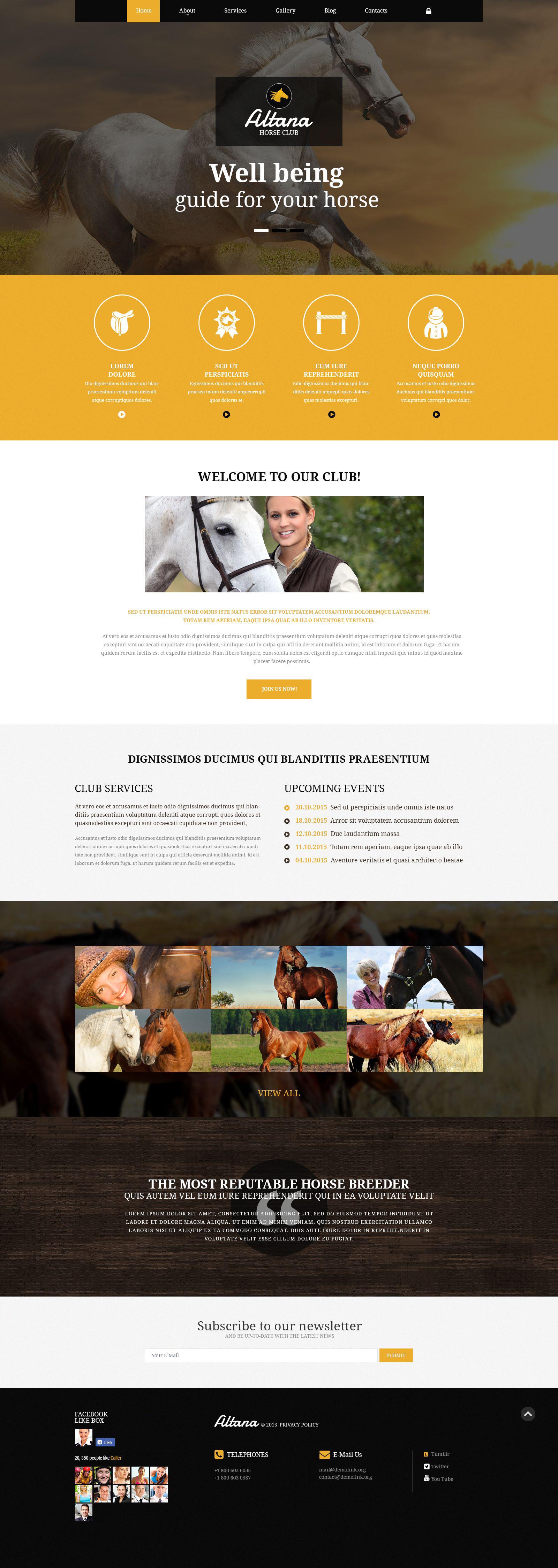 Joomla Vorlage #54953 für Pferd