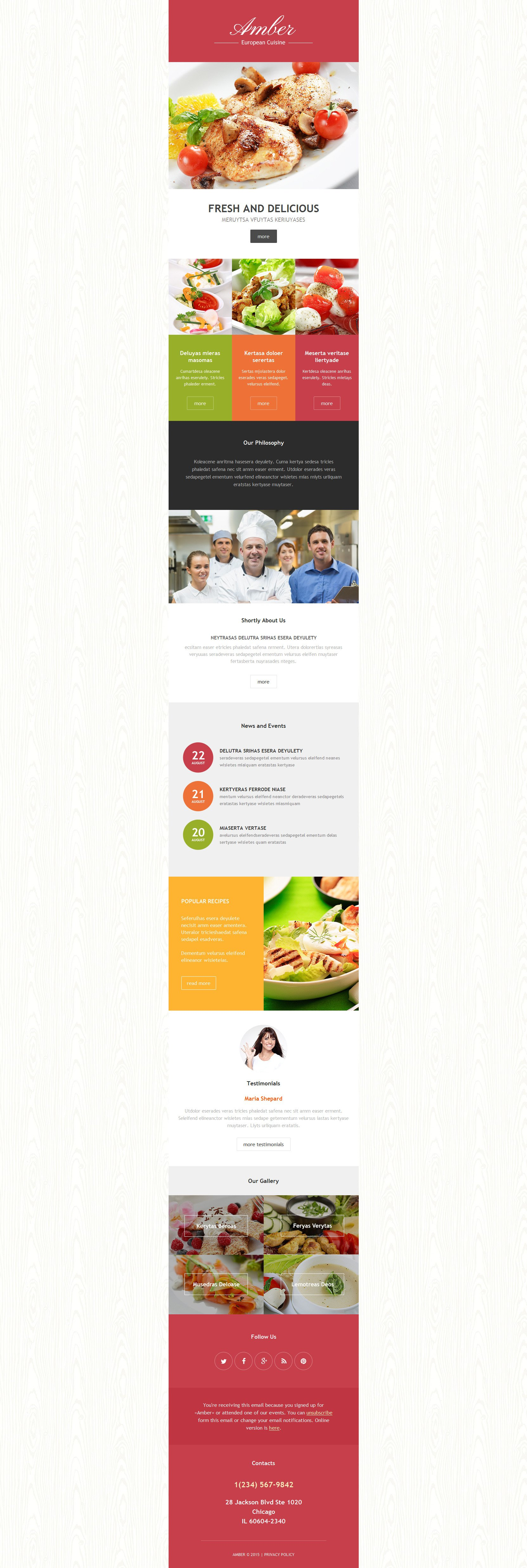 Responsive Newsletter Vorlage für Europäisches Restaurant #54962