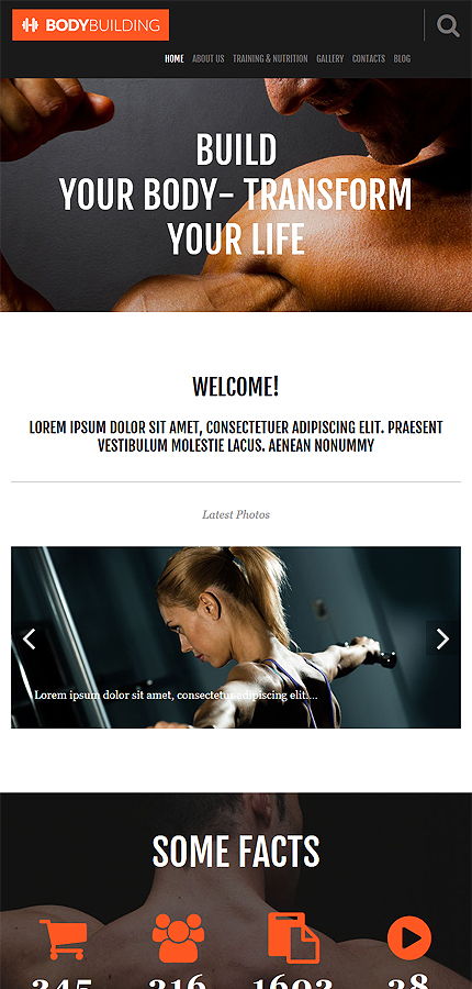WordPress Theme/Template 55028 Main Page Screenshot