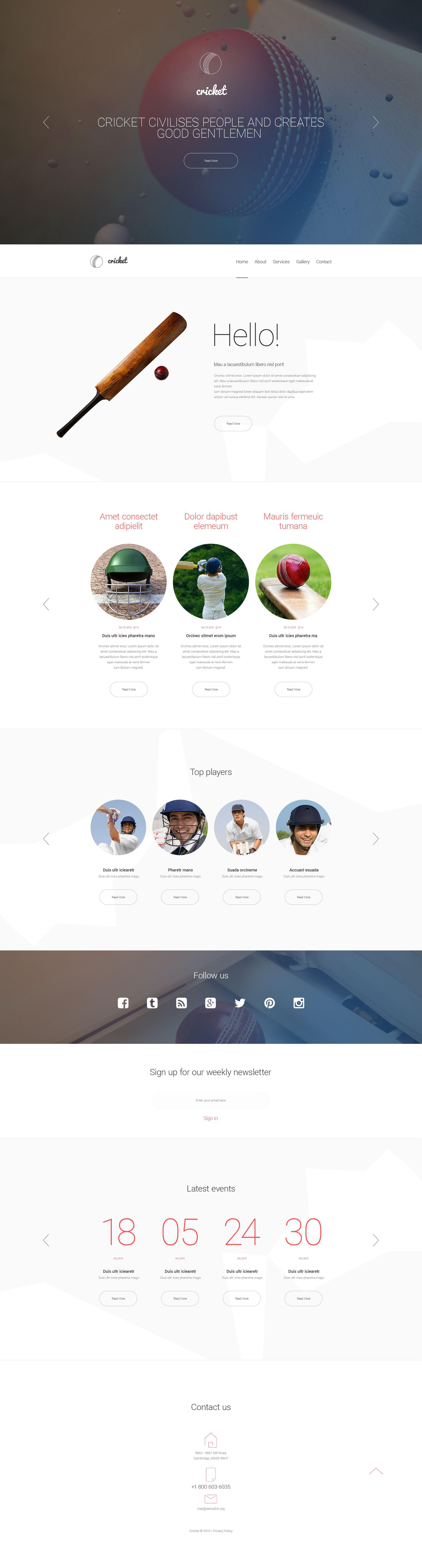 """""""Cricket"""" Responsive Website template №55075"""