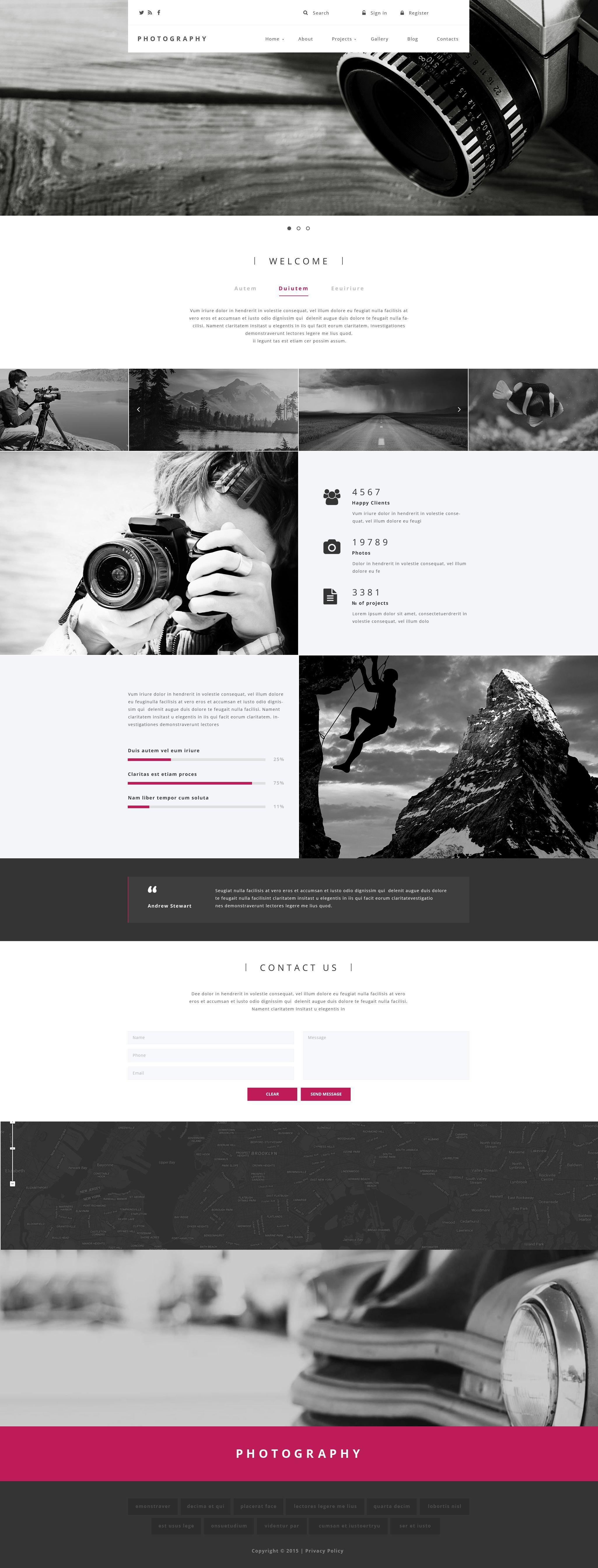 """Plantilla Drupal """"Photography"""" #55089 - captura de pantalla"""