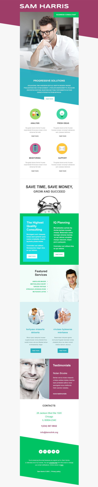 Business Responsive Newsletter šablona