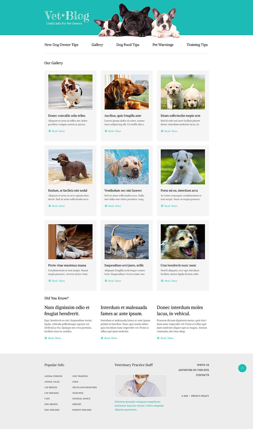 Website Design Templates For A Veterinarian