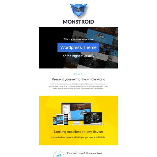 Monstroid - Responsive Newsletter Template