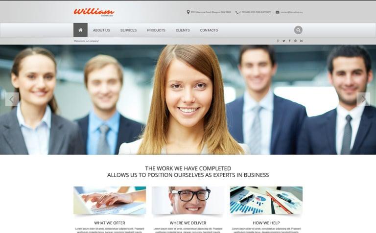 Online Business Image Website Template