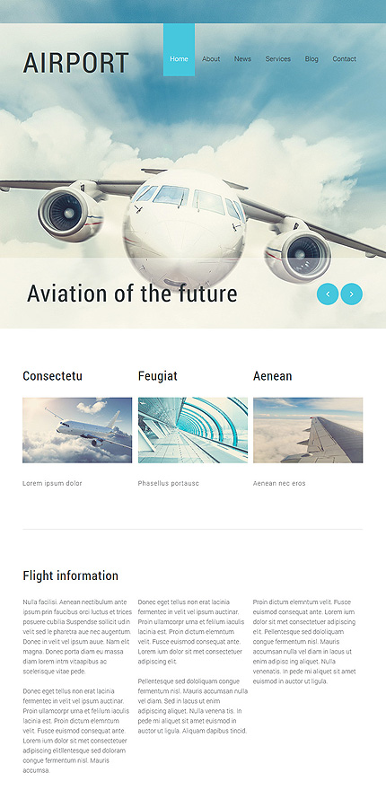 Joomla Theme/Template 55272 Main Page Screenshot