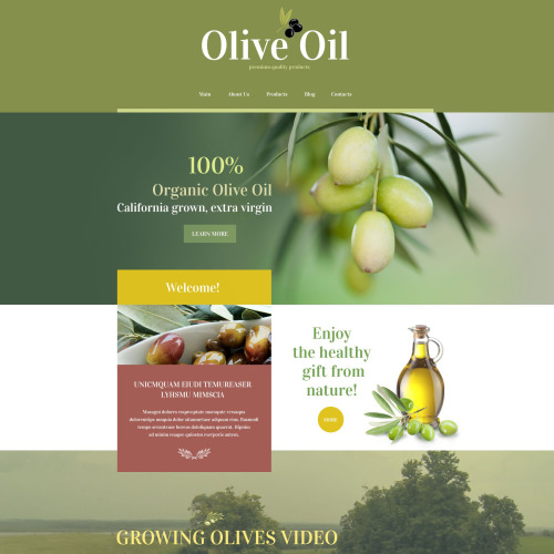 Olive Oil - WordPress Template based on Bootstrap