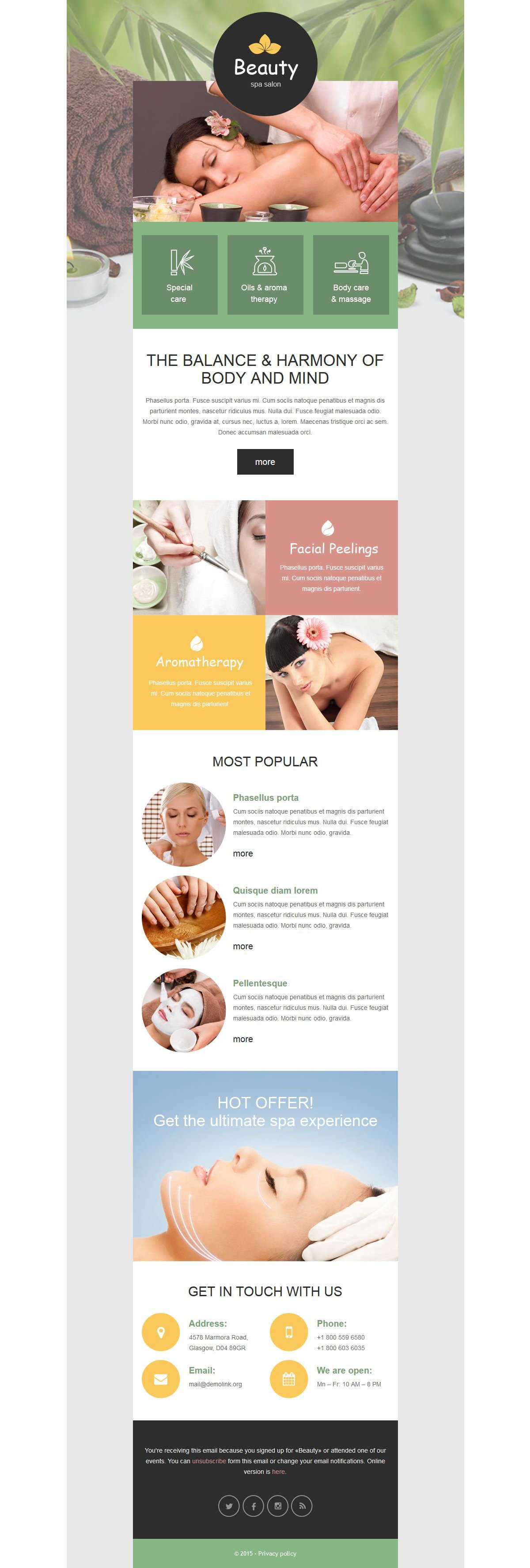 Spa Accessories Responsive Newsletter Template