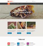 Website  Template 55359