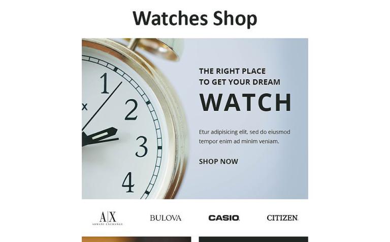 Newsletter Vorlage #55374 für Uhren