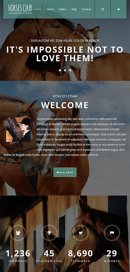 Joomla Theme/Template 55403 Main Page Screenshot