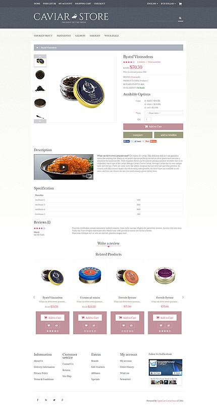 ADOBE Photoshop Template 55467 Home Page Screenshot