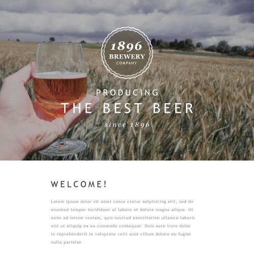 1896 Brewery - Responsive Newsletter Template