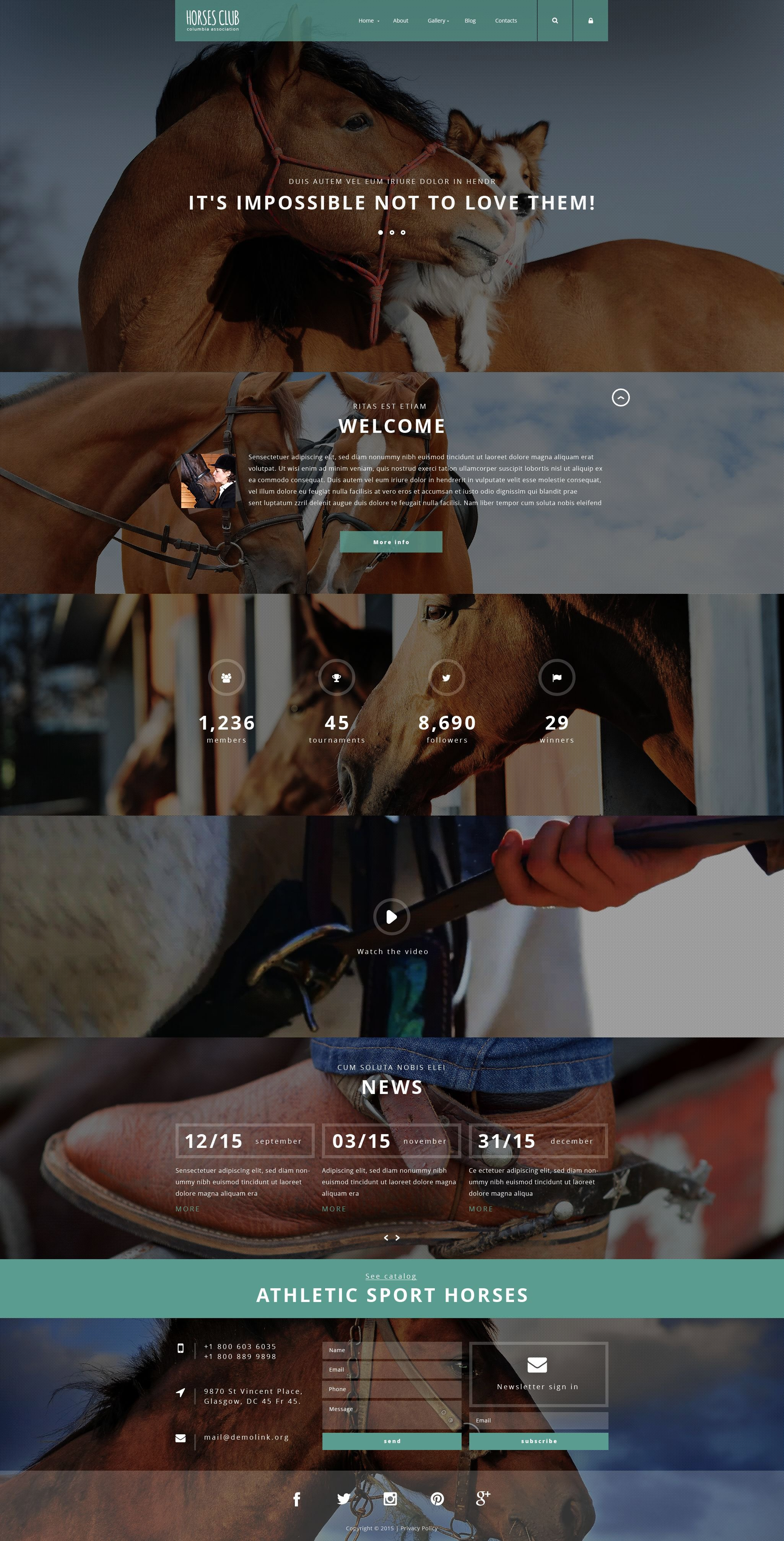 Horses Club Joomla Template
