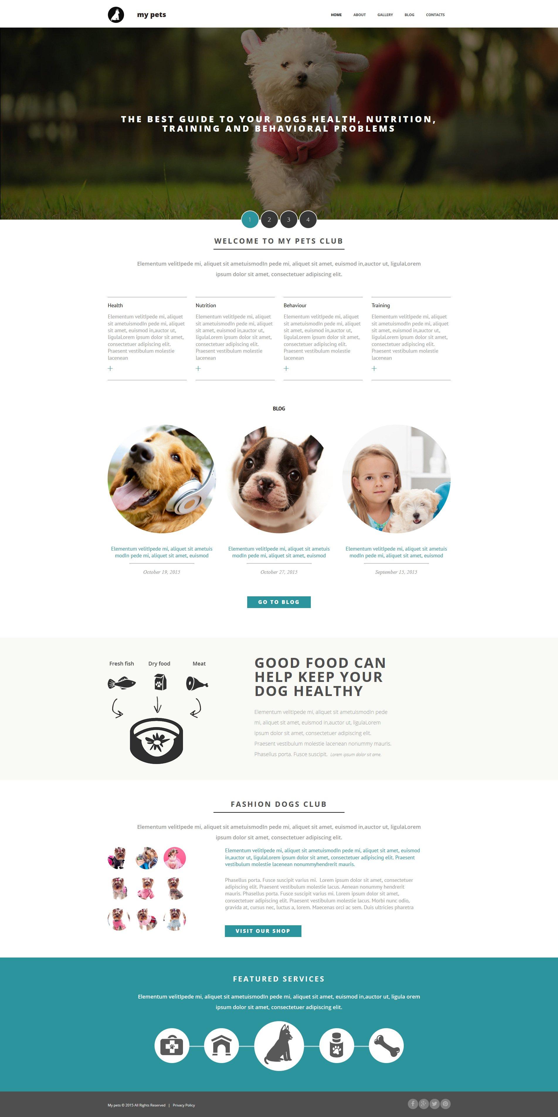 Pet Shop Responsive Moto CMS 3 Template