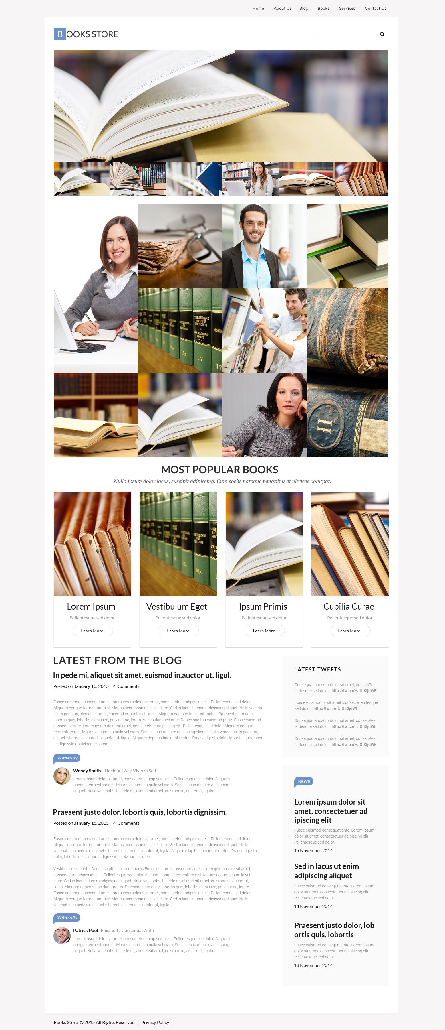 Responsive WordPress thema over Boeken №55454