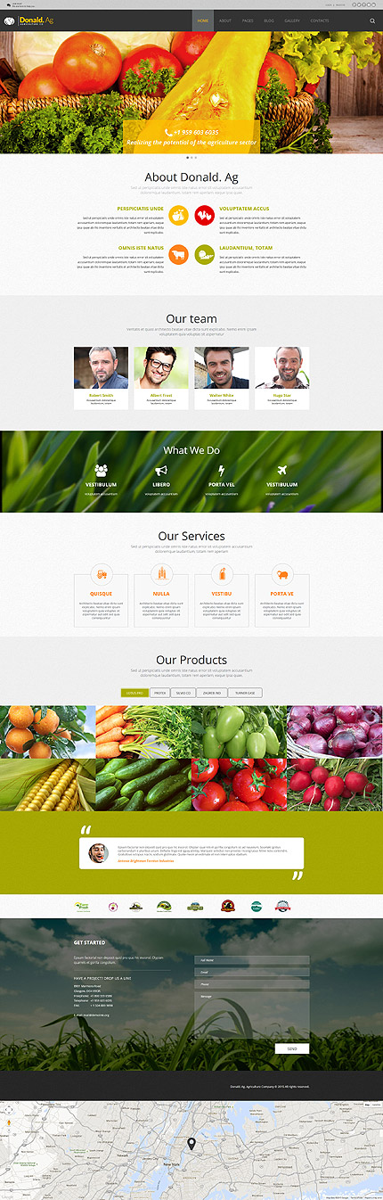 Joomla Theme/Template 55599 Main Page Screenshot