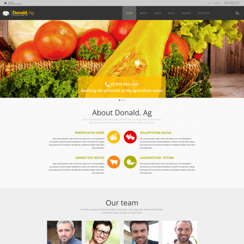 Doanld. Ag - Joomla! Template based on Bootstrap