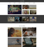 Society and Culture Website  Template 55796