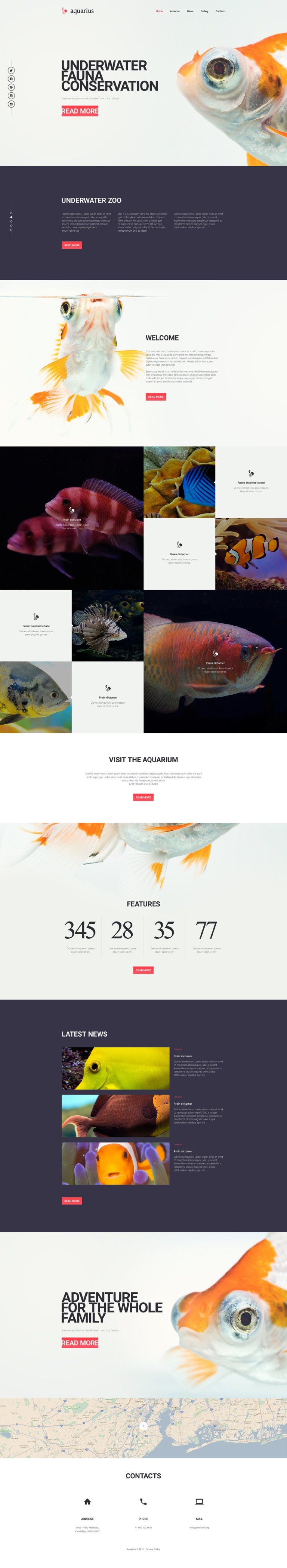 Aquarius Website Template New Screenshots BIG