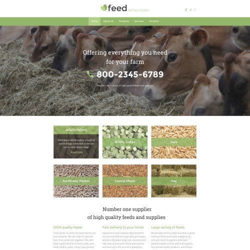 Feed - Website Template based on Bootstrap