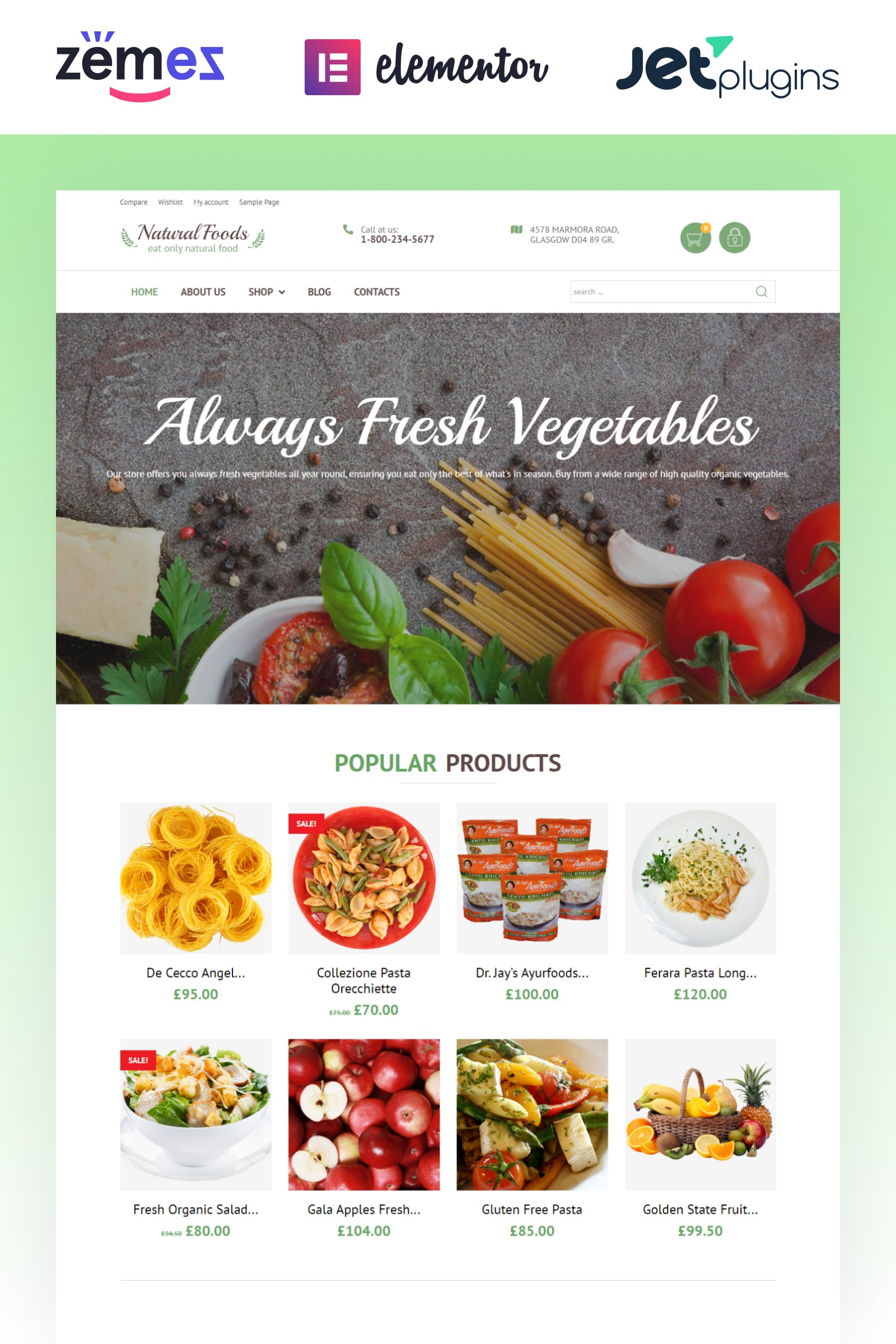 """Natural Foods - Organic Food Template for Online Stores"" 响应式WooCommerce模板 #55738"