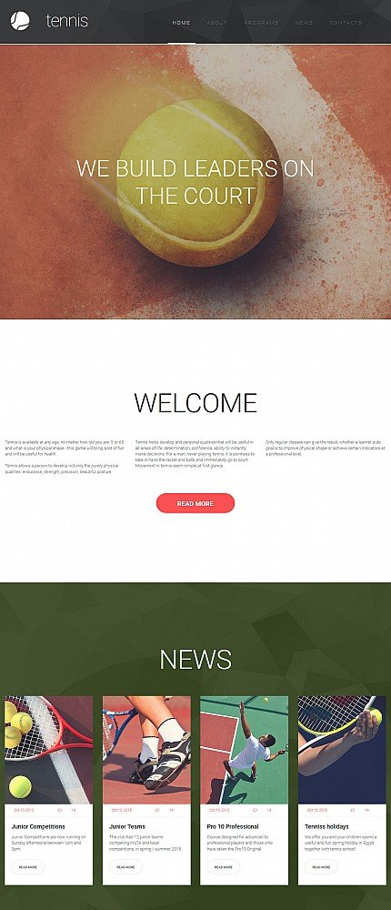 ADOBE Photoshop Template 55849 Home Page Screenshot