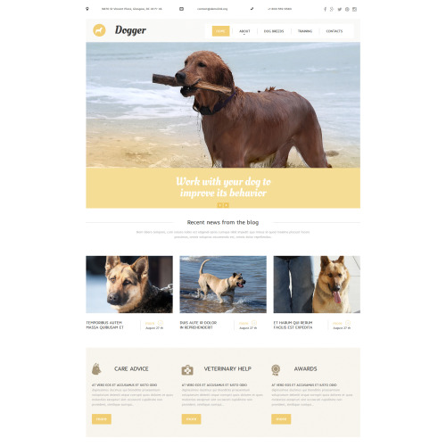 Dogger - MotoCMS 3 Template based on Bootstrap