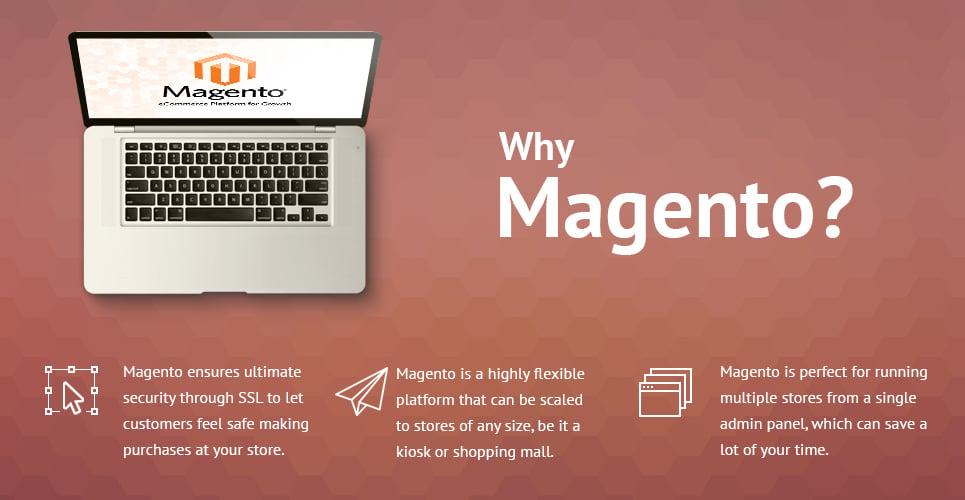 Wine Store Magento Theme
