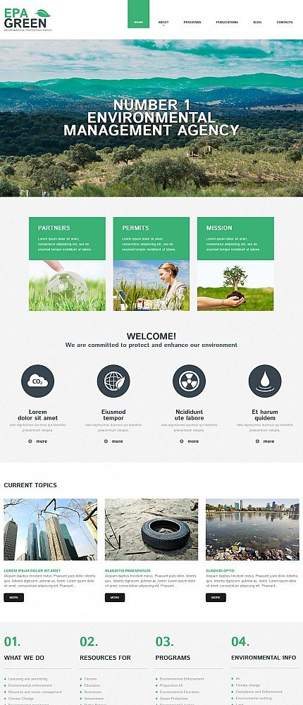 ADOBE Photoshop Template 55986 Home Page Screenshot