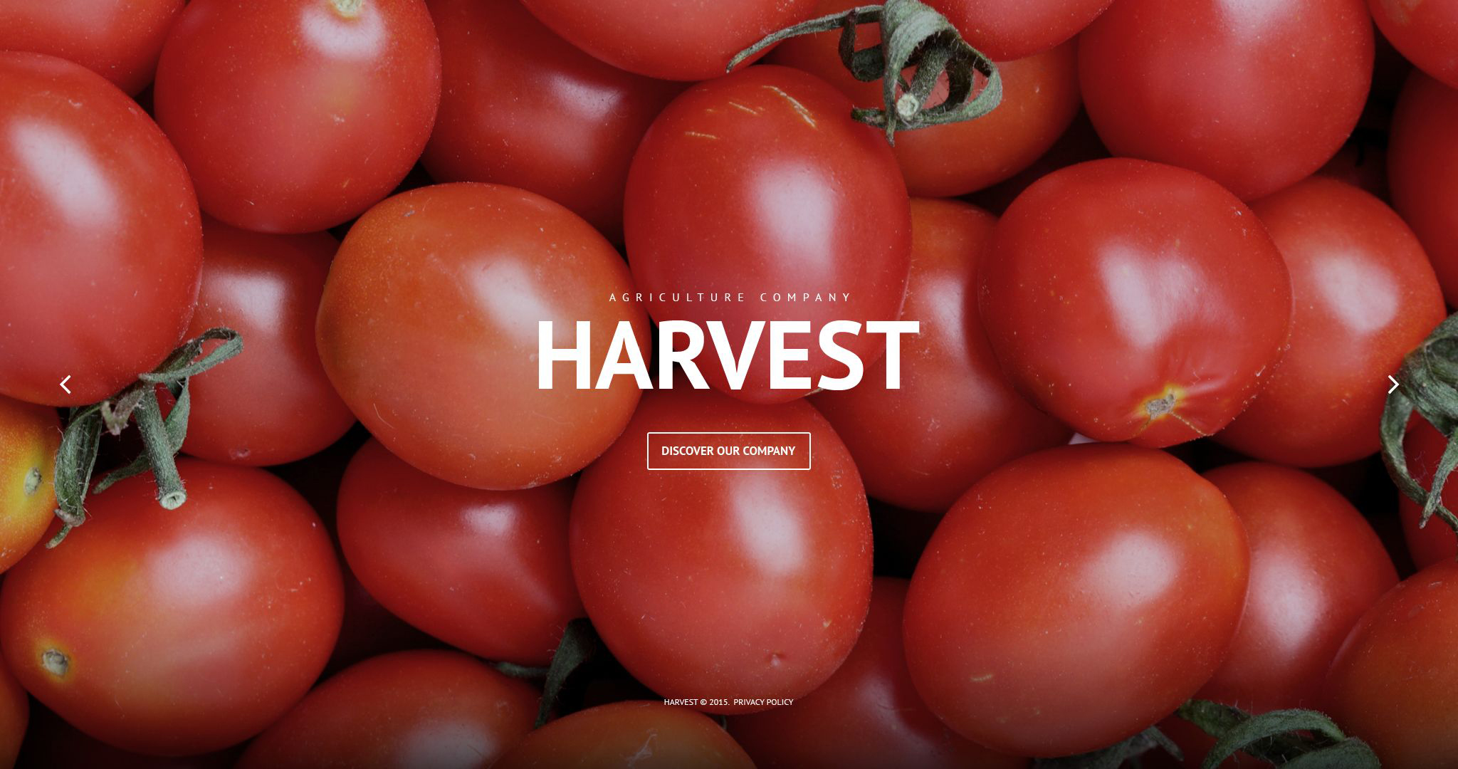 Harvest PSD Template