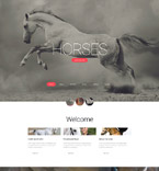 Animals & Pets Website  Template 56066