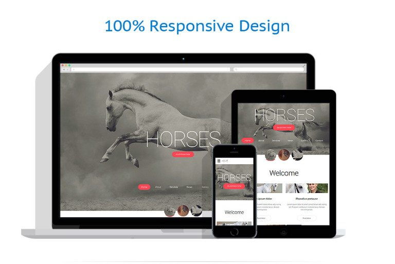 Horses Web Template – Point of Contact Template