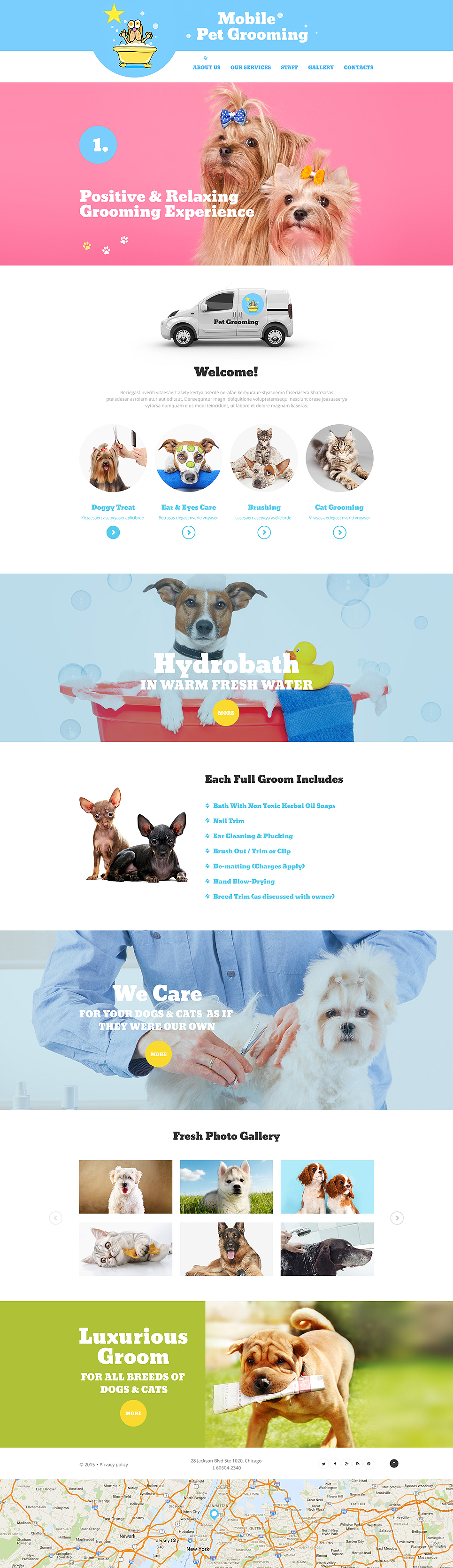 Mobile Pet Grooming template illustration image