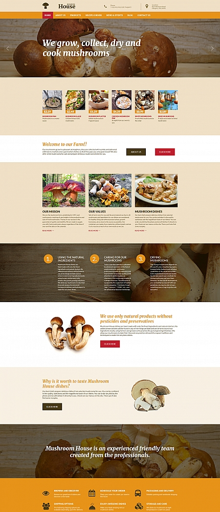 ADOBE Photoshop Template 56099 Home Page Screenshot