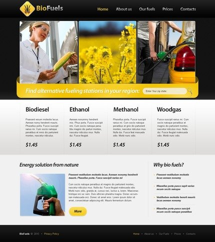 ADOBE Photoshop Template 56202 Home Page Screenshot