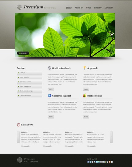 ADOBE Photoshop Template 56348 Home Page Screenshot