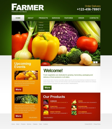 PSD макет сайта №56429