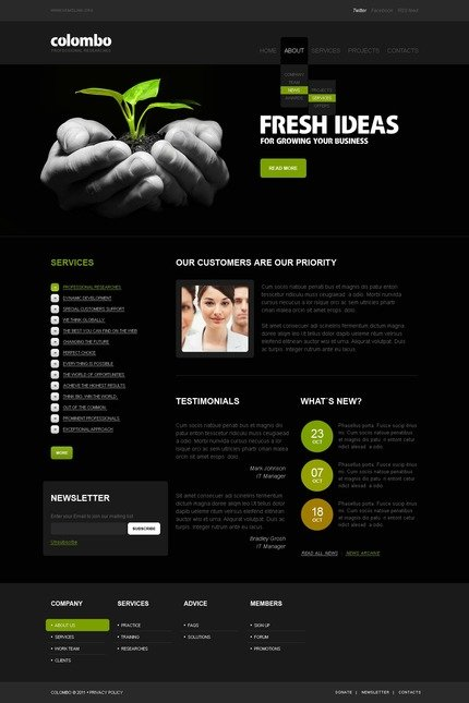ADOBE Photoshop Template 56452 Home Page Screenshot