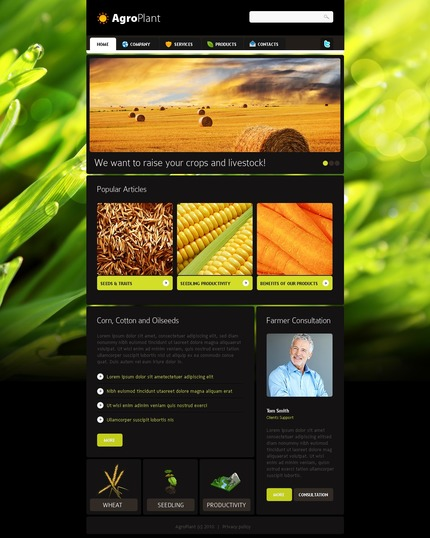 PSD макет сайта №56472